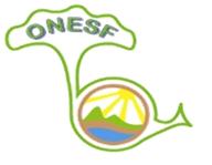 Observatoire National de l'Environnement et du Secteur Forestier