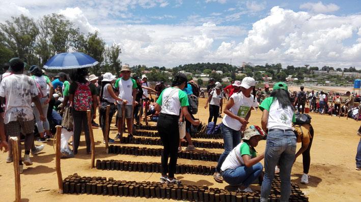 FLSH et MEDD : un calendrier chargé entre les deux institutions pour les rebouchages des pots en plastique pour les 8.000.000 de jeunes plants