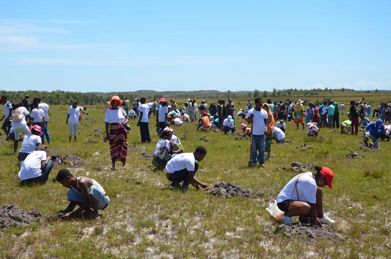 Lancement de la campagne de reboisement le 19 Janvier 2020 : « Madagasikara rakotra ala no tanjona »