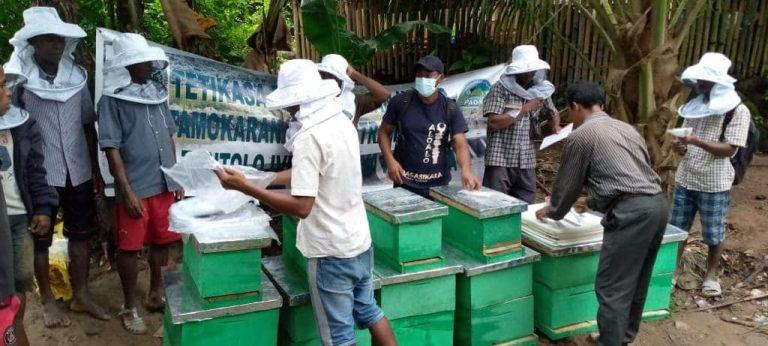 Les VOI à  AMBOAMBE SOANIERANA IVONGO sont initiés à l'apiculture