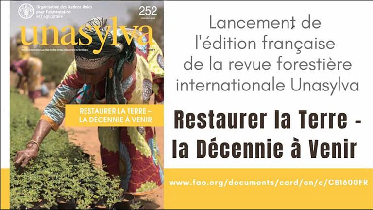 LANCEMENT OFFICIEL EN LIGNE DE L'UNASYLVA 252 EN VERSION FRANCAISE : « RESTAURER LA TERRE : LA PROCHAINE DECENNIE »
