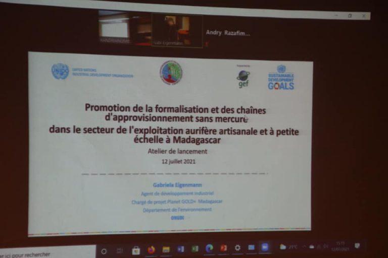 PROJET GOLD+ : POUR LA SUPPRESSION PROGRESSIVE DE L'UTILISATION DU MERCURE DANS L'EXPLOITATION AURIFÈRE