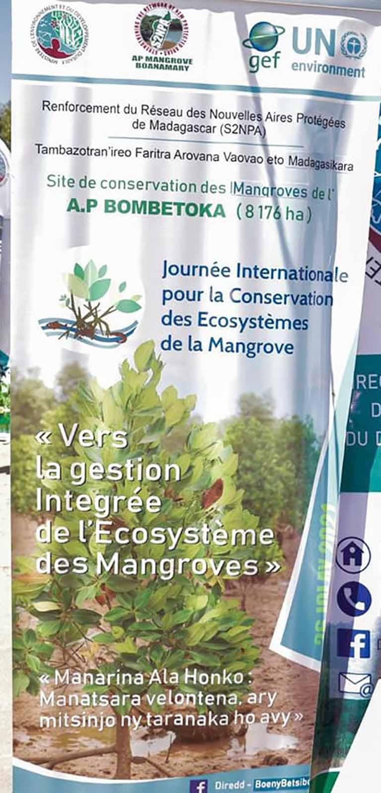 LES INITIATIVES RELATIVES A LA GESTION DE L'ECOSYSTEME MANGROVE A MADAGASCAR
