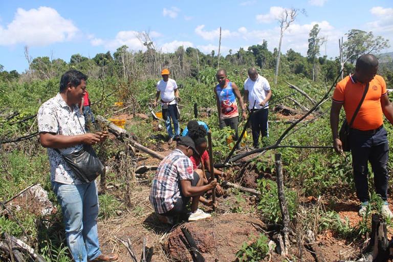 ACTIONS DE PROTECTION DU BASSIN VERSANT A SAHANALAOTRA, REGION ATSIMO ATSINANANA