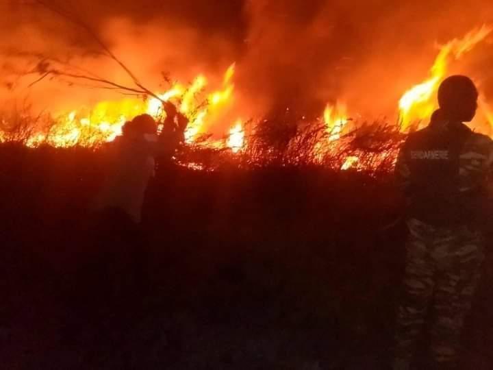 TOLIARA : UN FEU RAVAGE LES VONDRO D'AMBONDROLAVA, COMMUNE DE BELALANDA