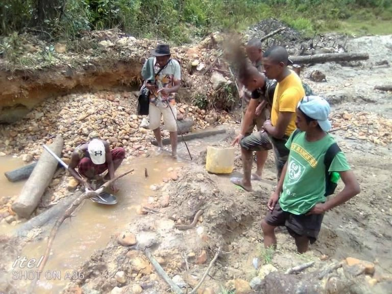 DES EXPLOITANTS ILLICITES APPREHENDES DANS LE CORRIDOR FORESTIER ANKENIHENY ZAHAMENA (CAZ)